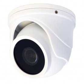 Speco HD-TVI 2MP Intensifier T Mini-Turret Camera- 2-9mm Fixed Lens - White Housing