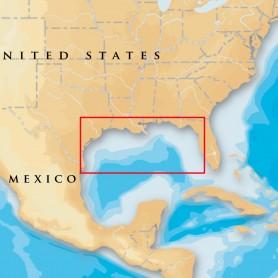 Navionics Platinum- - Gulf Of Mexico - microSD-SD