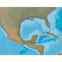 C-MAP 4D NA-D064 Gulf of Mexico - microSD-SD