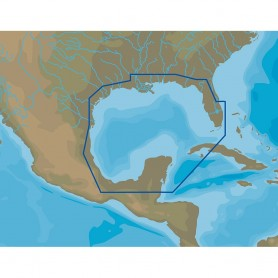 C-MAP NA-Y064 Gulf of Mexico - microSD-SD