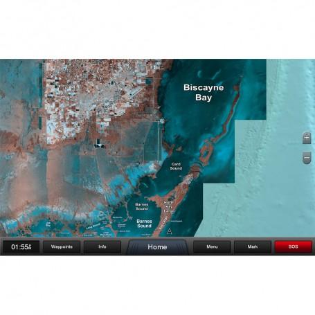 Garmin Standard Mapping - Florida One Classic microSD-SD Card