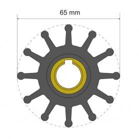 Albin Pump Premium Impeller Kit 65 x 15-8 x 51mm - 12 Blade - Key Insert