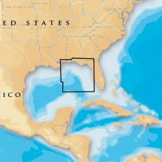Navionics Platinum- - East Gulf of Mexico - microSD-SD