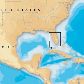 Navionics Platinum- - South - Central Florida - microSD-SD
